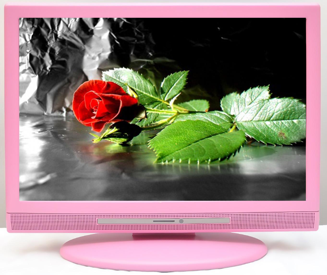 19 Zoll HD Ready LCD-Fernseher
